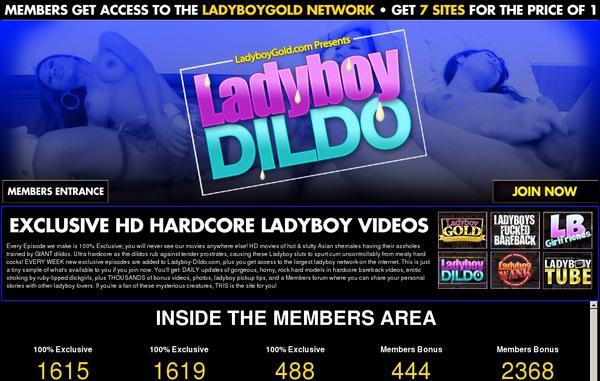 Ladyboy Dildo Free Hd