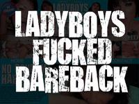 Ladyboydildo ladyboy cock
