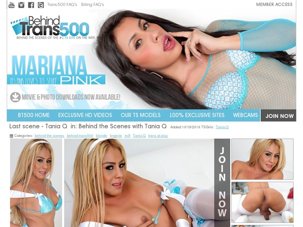 Behindtrans500 Premium Accounts Free